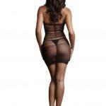 le-desir-high-lace-neck-net-mini-dress-back-full